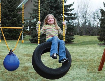 Picture of 2 Chain Tire Swing